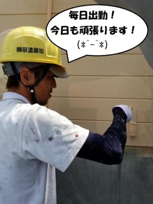 コメント中塗り塗装職人スマイル高圧洗浄令和2年浅原スマイル外壁塗装の事なら浜松塗装専門店 加藤塗装職養生作業