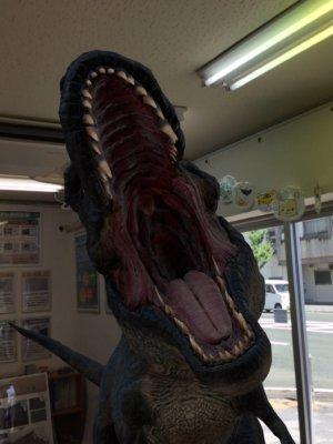 image1trex恐竜AR 浜松駅南ショールーム 外壁塗装の事なら浜松塗装専門店|加藤塗装ティラノサウルス降臨