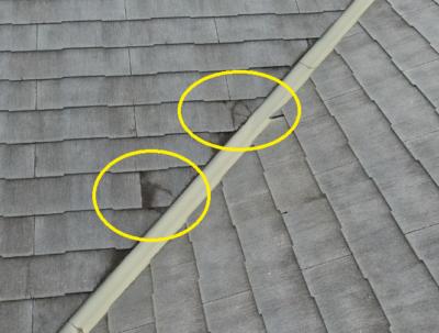 スレート屋根ひび割れ タスマジック 施工事例 外壁塗装の事なら浜松塗装専門店|加藤塗装 経年劣化 台風被害