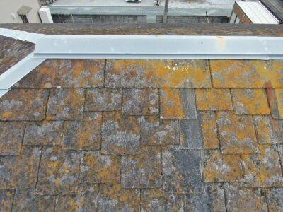 うろこ屋根 カラーベスト 色褪せ 藻 苔 劣化症状 水はけが悪い 外壁塗装の事なら浜松塗装専門店|加藤塗装